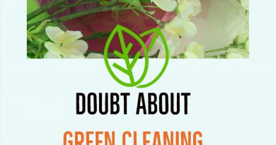 Doubt About Green Cleaning Products Really Safe?